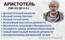 Аристотель и болтун интересные факты