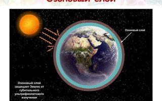 Толщина озонового слоя – интересные факты