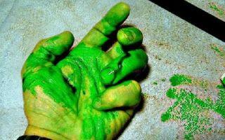 Зеленая кровь – интересные факты