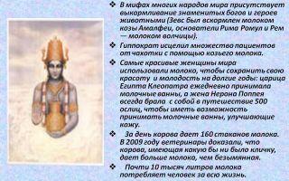 7 популярных мифов – интересные факты