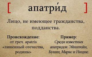 Кто такие апатриды? интересные факты