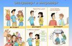 Как видят мир экстраверты и интроверты