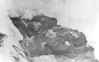 Группа дятлова: факты и тайна гибели