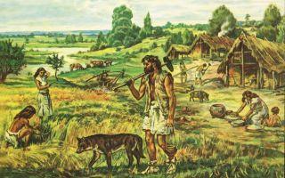 Аграрная революция первобытных людей