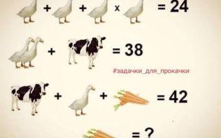 Задачи на логику с ответами – прокачка мозга