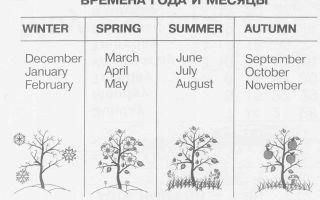 Время суток и времена года на английском