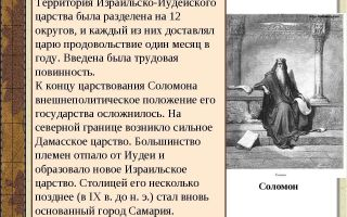 Светлана старикова — биография, факты, фото
