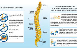 Болит спина в пояснице – причины и лечение