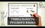 Уникальный русский язык – интересное видео