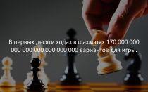 Глупый шахматист интересные факты