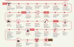 Хронология великой отечественной войны